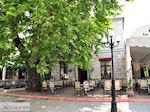 Thassos stad - Limenas | Griekenland | Foto 10