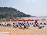 Golden Beach - Skala Panagia - Chrissi Ammoudia | Thassos | Foto 4