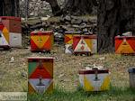 Van Skala Maries naar Maries | Thassos | Foto 2 - Foto van De Griekse Gids