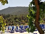 Makryammos - Strand bij Limenas (Thassos stad) | Foto 3