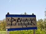 Golden Beach - Skala Panagia - Chrissi Ammoudia | Thassos | Foto 8