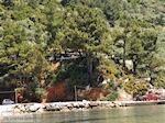 Golden Beach - Skala Panagia - Chrissi Ammoudia | Thassos | Foto 15 - Foto van De Griekse Gids